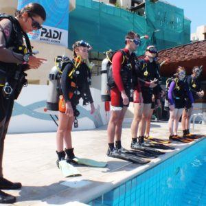Paphos Dive Centre - cydive the place to be