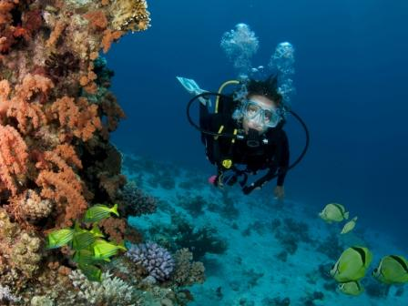 Advanced Open Water Course PADI